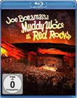 Joe Bonamassa - Muddy wolf at red rocks (Blu-ray), elokuva