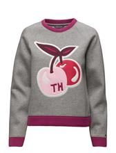 Tommy Hilfiger Sammy Graphic Swtr Ls 13928303