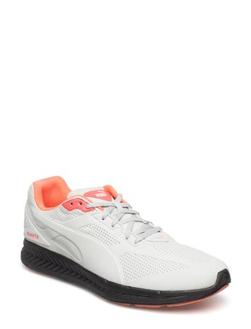 Puma Ignite Suede 10950359