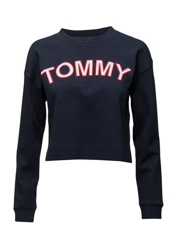 Tommy Hilfiger Tommy Athletic Cn Top Ls 13981792