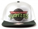 Teenage Mutant Ninja Turtles Logo Snapback Lippis