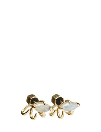 Cornelia Webb Stoned Mini Spider Earring 15433654