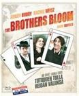 Brothers Bloom (Blu-ray), elokuva