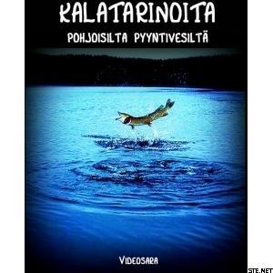 Videosara Kalatarinoita pohjoisilta pyyntivesiltä, DVD