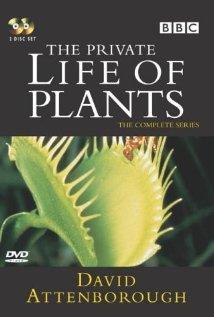 Private Life Of Plants: Koko sarja, TV-sarja