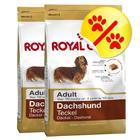 Säästöpakkaus: Royal Canin Breed Dachshund Adult - 2 x 7,5 kg
