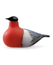 Iittala Birds by Toikka Punatulkku, lasilintu