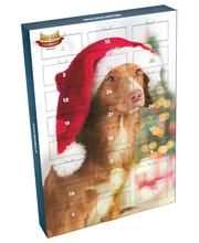 HHC Koiran joulukalenteri
