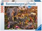 Ravensburger, Palapeli, Afrikan eläimet, 3000 palaa