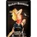 Harley Davidson Biker Babe Kilpi 20x30cm