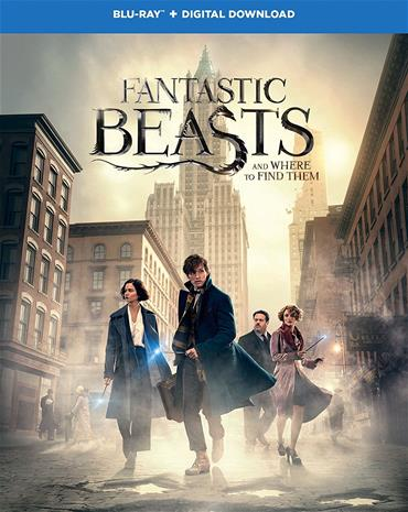 Fantastic Beasts and Where to Find Them (Blu-Ray), elokuva