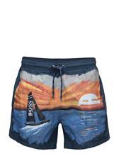 BOSS Sand Shark 14227441