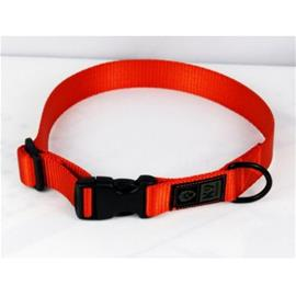 K9 Thorn Collar 25mm - Orange