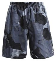Reebok ONE SERIES Urheilushortsit grey