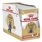 Royal Canin British Shorthair Wet 12x 85g