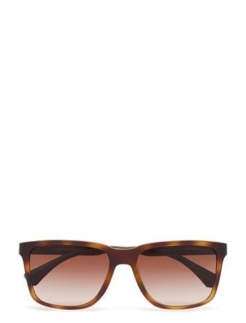 Emporio Armani Sunglasses Modern HAVANA RUBBER
