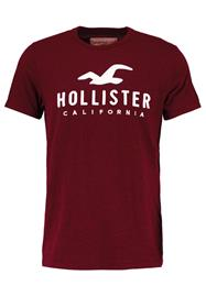 Hollister Co. TIMELESS Printtipaita burgundy