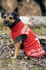 Ellos Koiran jouluneulepusero