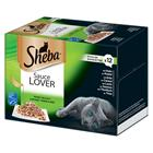 Sheba-rasialajitelma 12 x 85 g - Sauce Specialä©