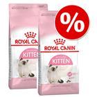 Kokeilupakkaus: 2 x 400 g Royal Canin Kitten - British Shorthair Kitten