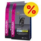 Eukanuba Size-säästöpakkaus - 2 x 15 kg Adult Large Breed Weight Control