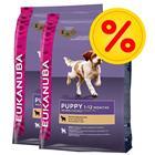 Eukanuba Puppy-säästöpakkaus - 2 x 12 kg Puppy Lamb & Rice