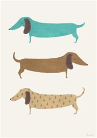 A Grape Design Sausage dogs A3