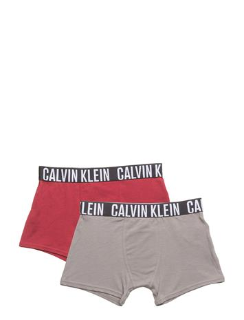 Calvin Klein 2 Pack Trunk, 485, 8 1 RHUBARB / 1 STEEL GREY