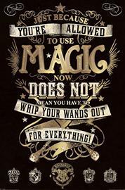 Harry Potter Magic Juliste monivärinen