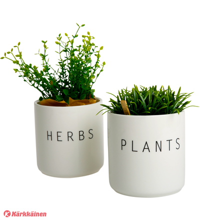 Koti Plants & herbs pieni yrttipurkki