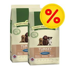 James Wellbeloved Junior / Senior-säästöpakkaus - 2 x 15 kg Junior Large Breed Turkey & Rice
