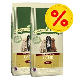 James Wellbeloved Adult-säästöpakkaus - 2 x 15 kg Adult Large Breed Fish & Rice