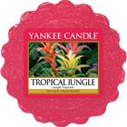Yankee Candle Tropical Jungle - Wax Melts Candles 22 g
