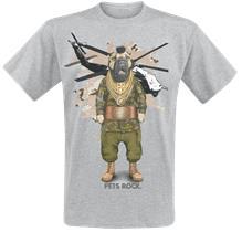 Pets Rock Fool T-paita sävytetty harmaa