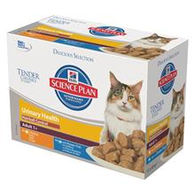 Hill`s Feline Adult Urinary & Hairball Control Chicken & Ocean Fish - 12 x 85 g
