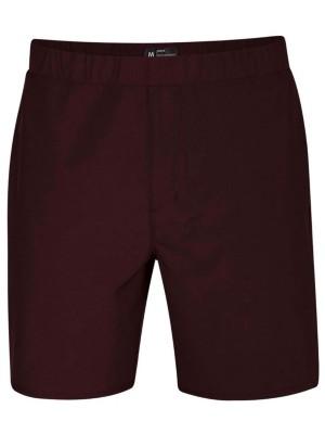 Hurley Alpha Trainer 2.0 18.5'' Shorts mahogany Miehet