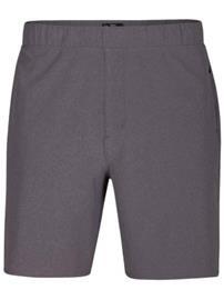 Hurley Alpha Plus Trainer 2.0 18.5'' Shorts dark grey Miehet