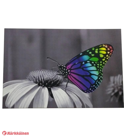 Noor Canvas Butterfly, led-valotaulu