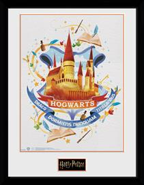 Framed collectors print - Harry Potter - Hogwarts Paint - Merchandise
