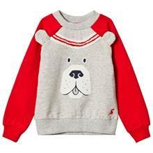 Grey Marl and Red Sleeve Dog Face Sweatshirt1 year