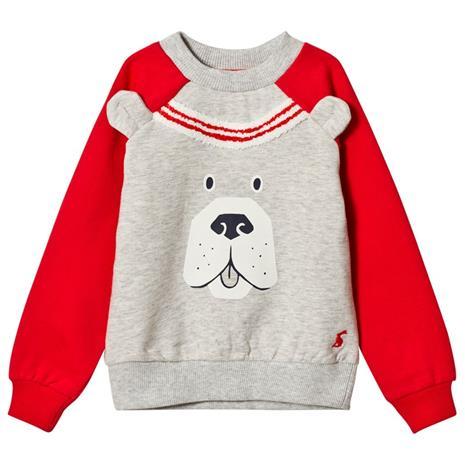 Grey Marl and Red Sleeve Dog Face Sweatshirt1 year