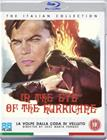 Negative - In the Eye of the Hurricane (Blu-Ray), elokuva