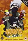 Naruto Unleashed: Kausi 3, TV-sarja