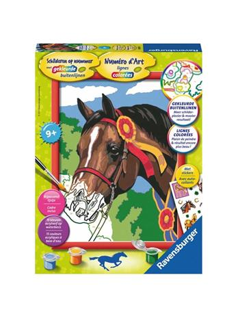 Ravensburger Painting by number - Horse at a Competition