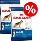 Royal Canin Size -säästöpakkaus - 2 x 15 kg Medium Digestive Care