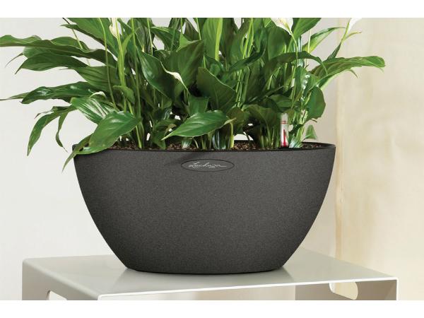 Lechuza Trend cubeto bowl all-in 40 x 18 cm, musta