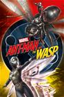 Ant-Man Ant-Man and the Wasp - Unite Juliste monivärinen