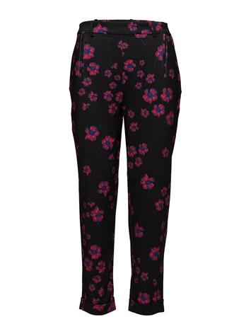 2nd One Anne 881 Pants PINK FLUORESCENT BLOOM