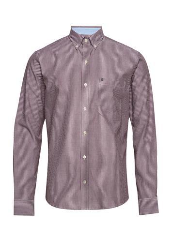 IZOD Poplin Stripe Bd Shirt FIG