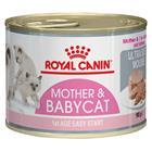 Royal Canin Babycat Instinctive Mousse - 12 x 195 g